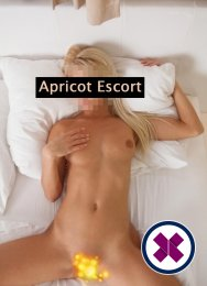 Caroline is a sexy German Escort in Köln