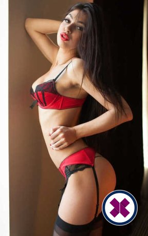 Darina is a hot and horny Dutch Escort from Amsterdam