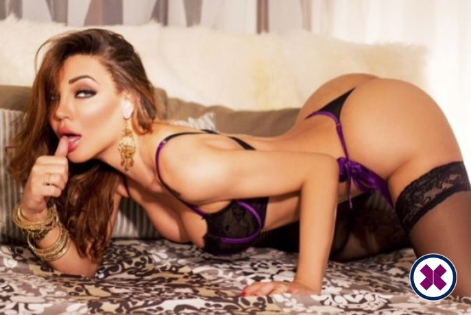 TS Becca Demillus is a sexy Brazilian Escort in Westminster