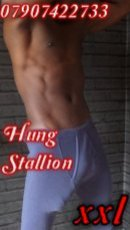 Spend some time with XXL Hung Bi Stallion in London; you won't regret it