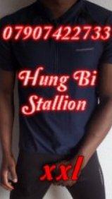 XXL Hung Bi Stallion - escort in London