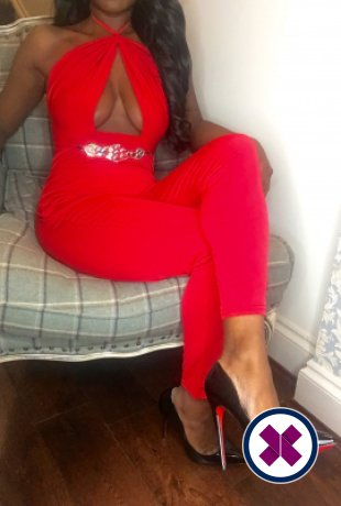 Amber Hot is a very popular British Escort in Liverpool