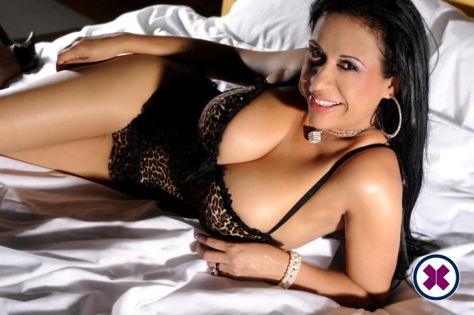 Exotic Catarina is a hot and horny  Escort from Westminster