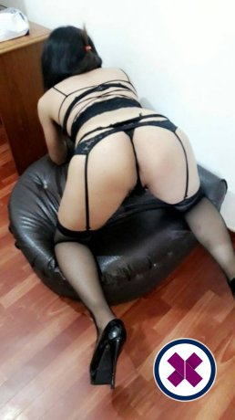Dado Arab TS is a hot and horny Lebanese Escort from Amsterdam