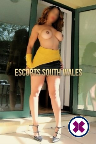 Nicole is a sexy British Escort in Swansea