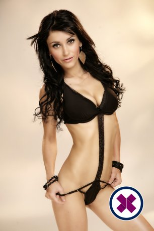 Beatrice is a sexy Dutch Escort in Amsterdam
